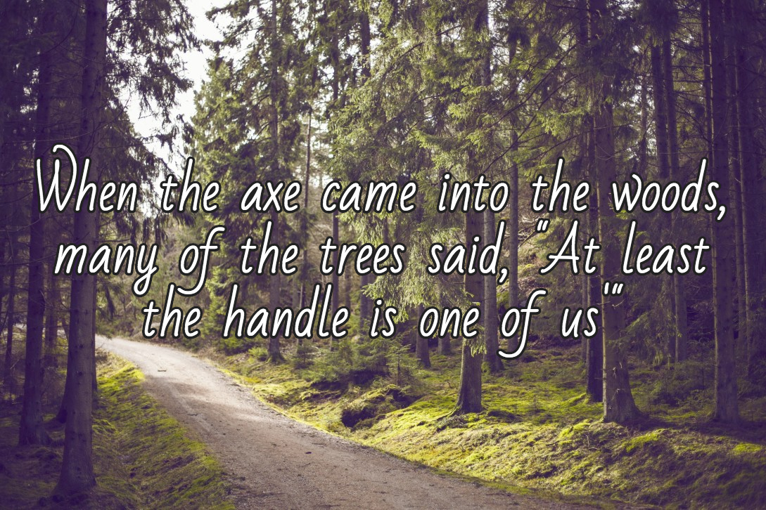 When the axe came into the woods, many of the trees said at least the handle is one of us.