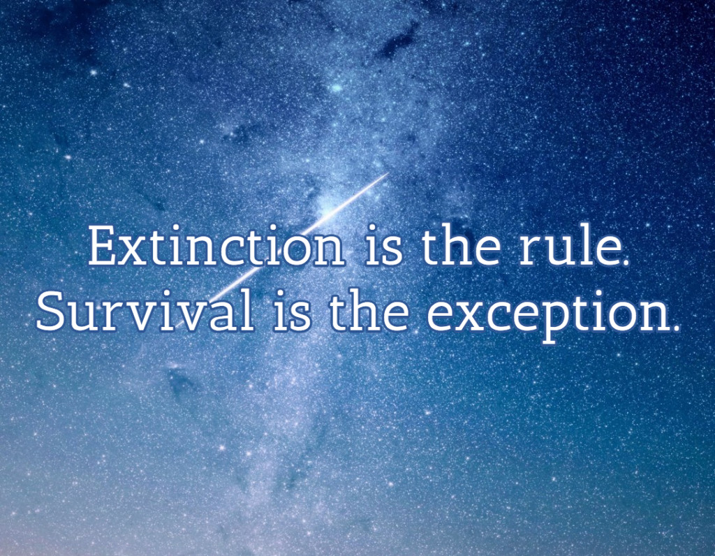 Extinction is a rule. Survival is the exception.
