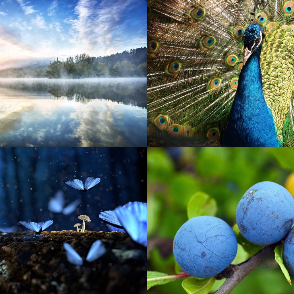 #MondayBlues collage post