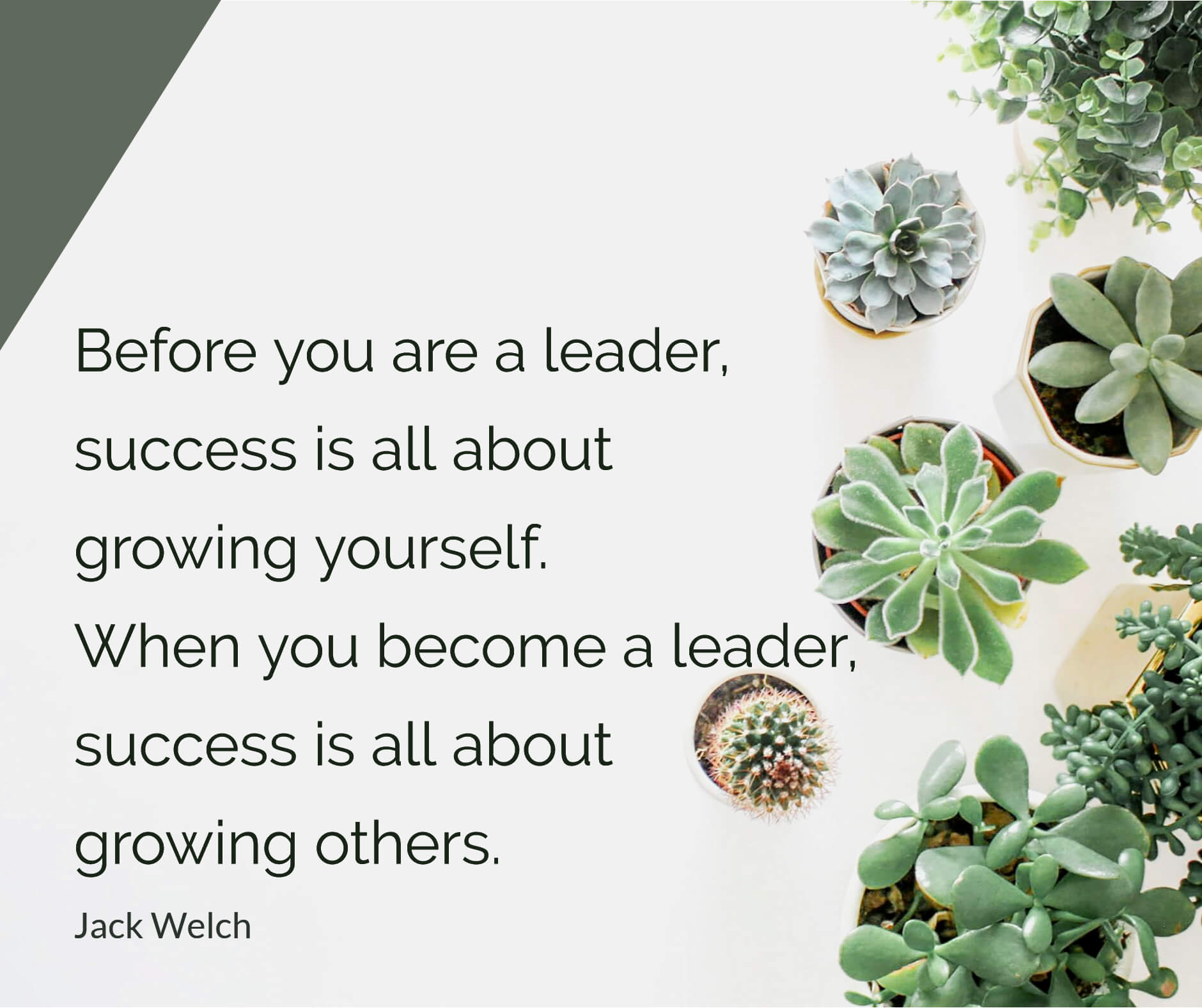 Before you are a leader, success is about growing yourself.